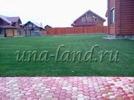 газон на дачном участке