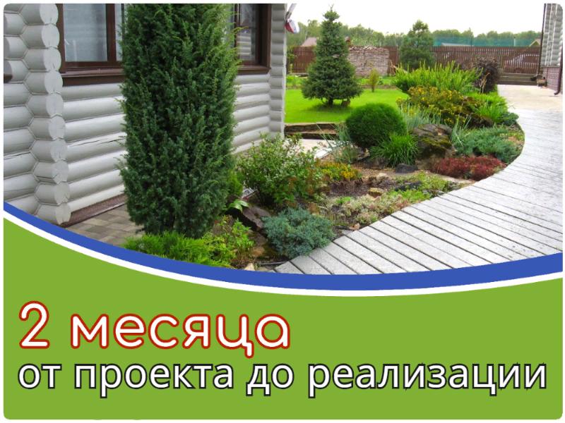 реализация ландшафтного проекта за 2 месяца в Дмитрове